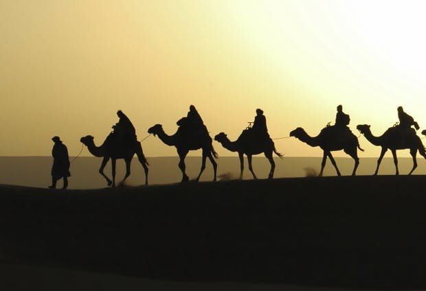 North Africa camel silhouette
