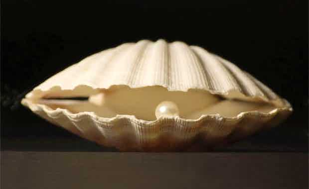 Shell image index